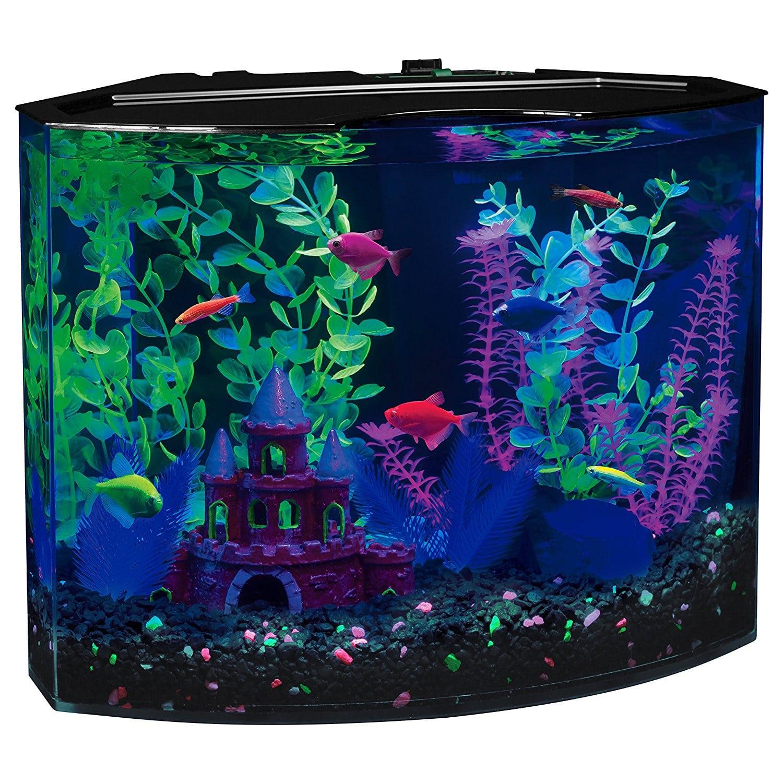 Glofish Tank FishTankBank. -...