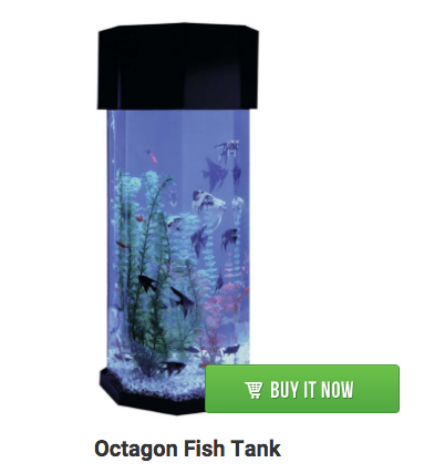 octagon-fish-aquarium