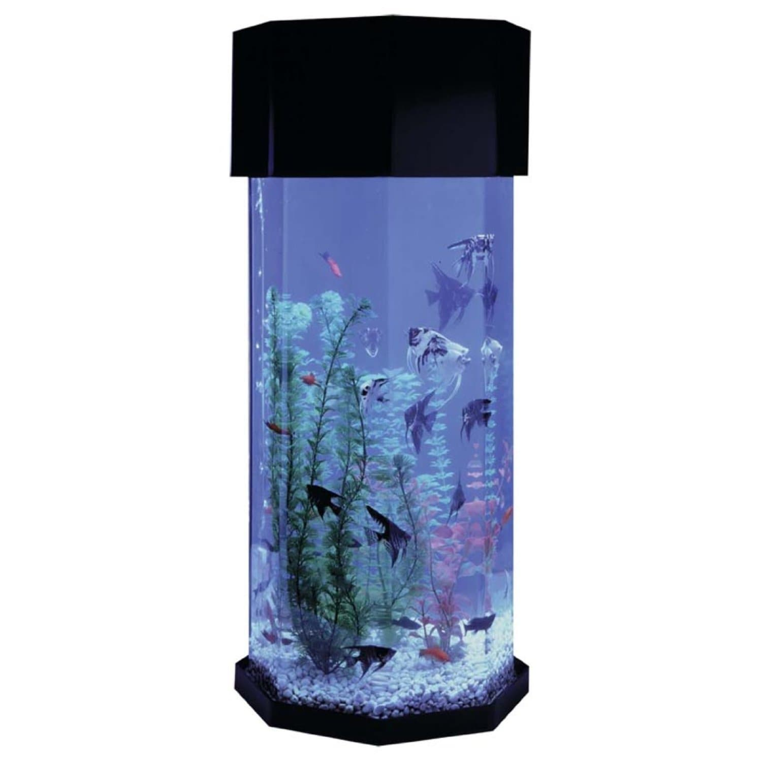 Funny Fish Tank Decorations Fish Tanks Aquariums Pet Fish Bowls Stands Fishtankbankcom