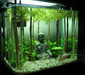 asian-bamboo