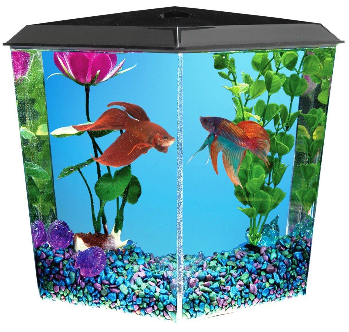 Corner Fish Tanks