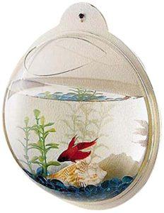 wall fish bowl