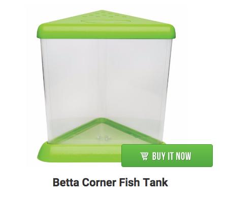 corner-betta-fish-tank
