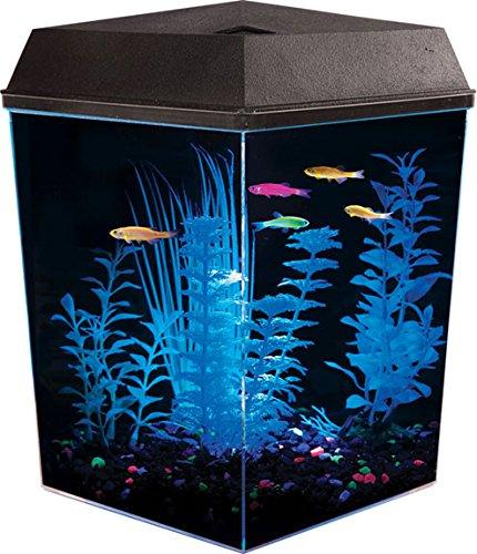 corner-fish-tank