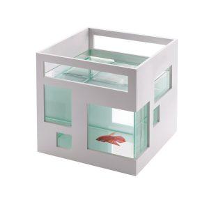 funky-fish-tank