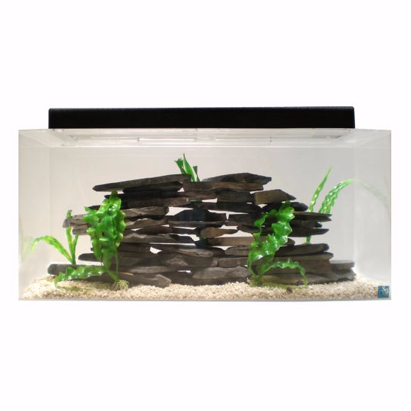 50-gallon-aquarium