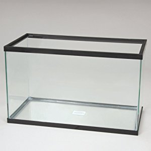 55 Gallon Fish Tanks & Aquariums