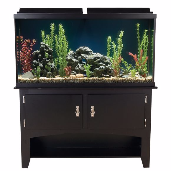 60-gallon-aquarium-ensemble