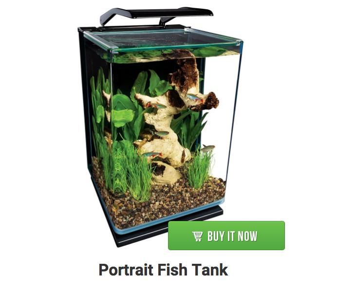 portrait aquarium