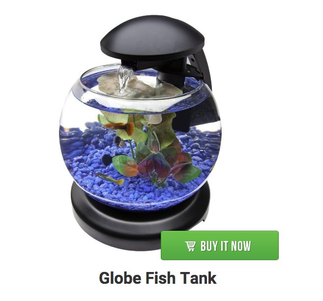 Globe fish bowl