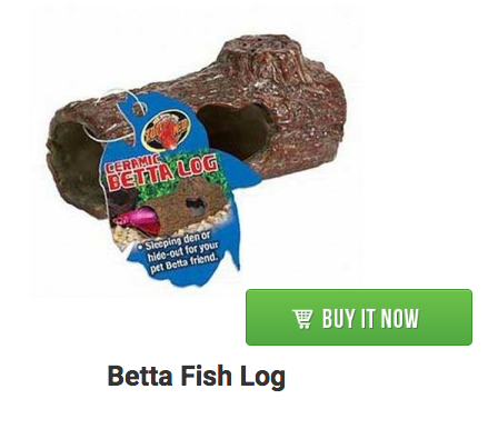 betta fish log
