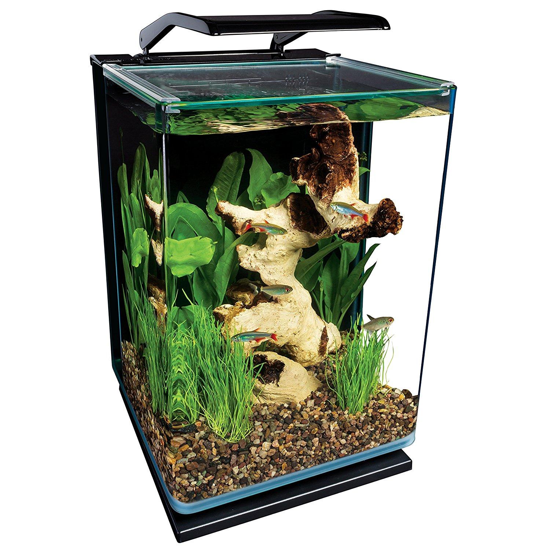 Fishtankbank betta fish tanks for Betta fish tank