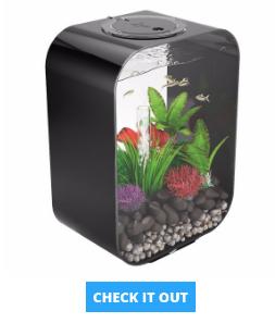 biorb-aquarium-fish