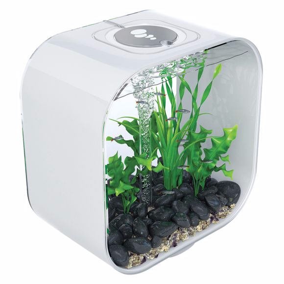 biorb-life-8-gallon