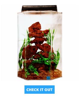 hexagon-gallon-aquarium
