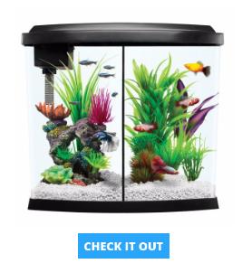 starter-aquarium-kit
