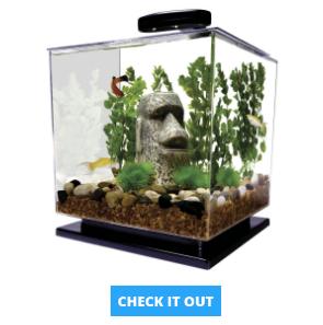 tetra-fish-tank