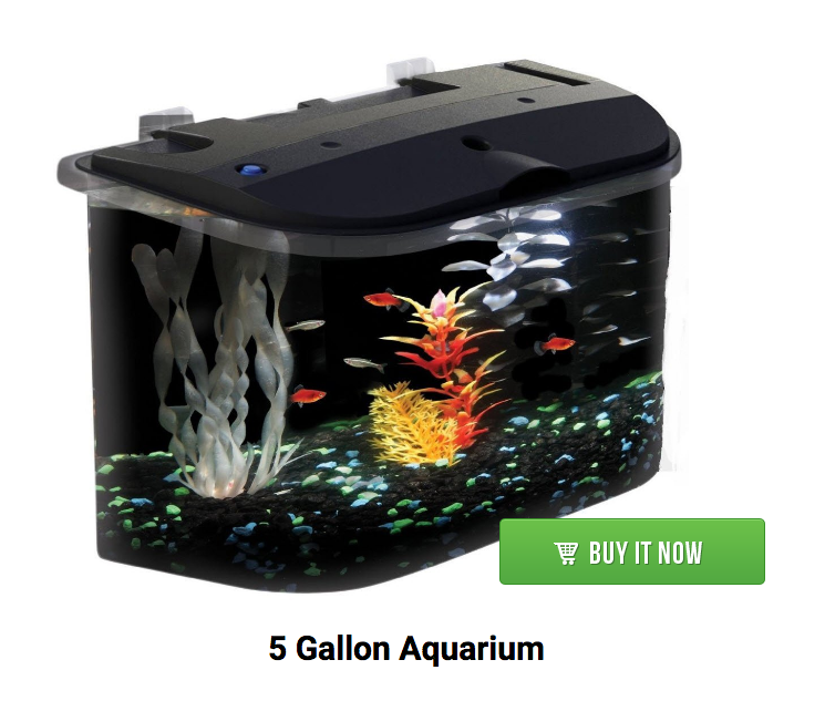 5 gallon aquarium