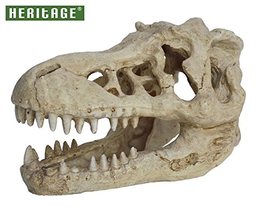 awesome t-rex skull