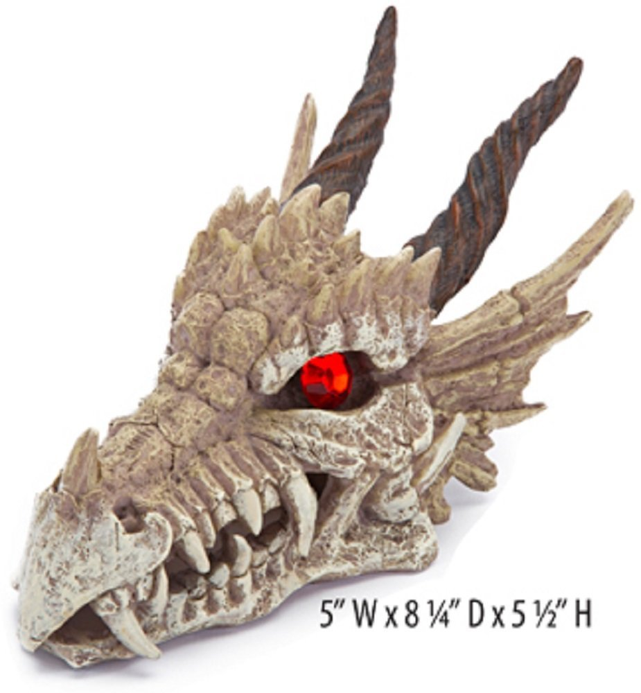 dragon skull decor