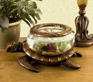 turtle-bowl