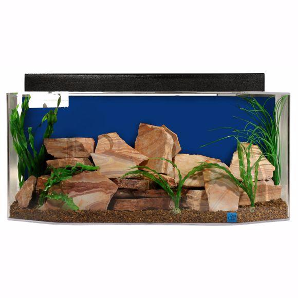 Corner fish tanks aquariums pentagon bow front for 20 gallon fish tank decoration ideas