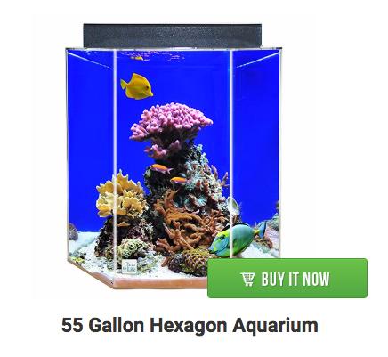 55-gallon-hexagon-aquarium