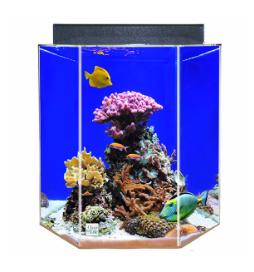 50 55 60 gallon fish tanks aquariums stands kits for 55 gallon hexagon fish tank