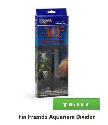 divider-aquarium-lees