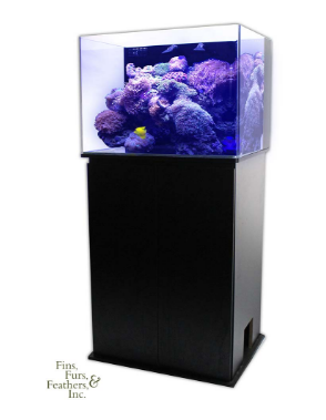 JBJ-Nano-Cube-30-Gallon-RL-Rimless