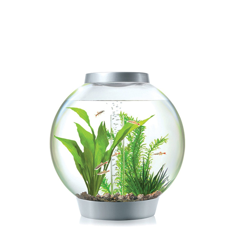 biorb-aquarium-classic