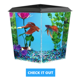 corner-fish-tanks-2