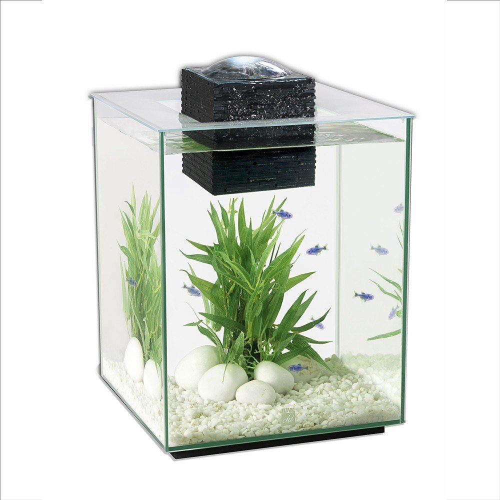 Betta fish tanks aquariums stands kits fishtankbank for Betta fish tank size