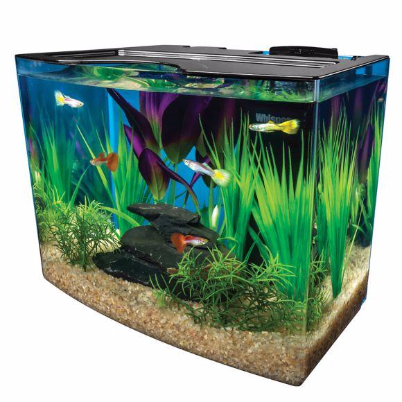 marineland-3-gallon-nook-aquarium